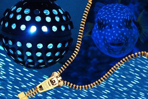 Disco Ball, Disco, Nightclub, Party, Club, Celebrate