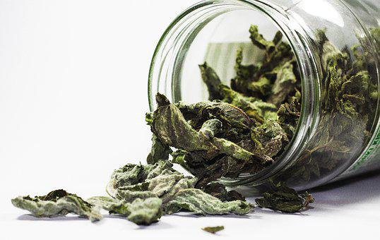 Spices, Mint, Health, Kitchen, Herbs, The Smell Of