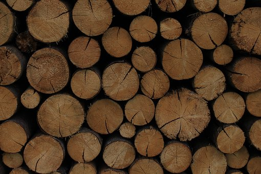 Wood, Circle, Wooden, Tree, Nature, Ring, Organic