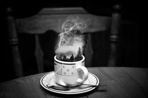 Cup, Steam, Forest, Mist, Fog, Coffee, Drink, Hot, Mug