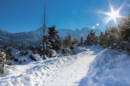 Alpine, Alpspitze, Trees, Bavaria, Mountains, Massif