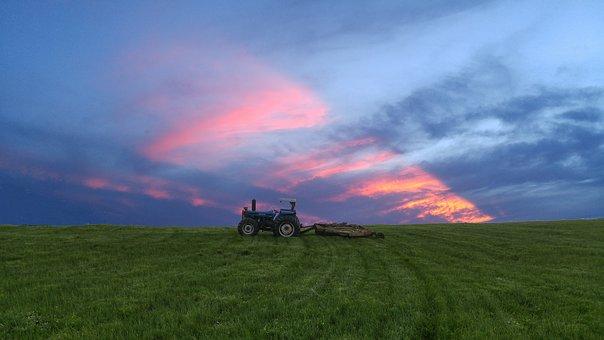 Sunset, Pasture, Grass, Field, Green, Meadow, Farm