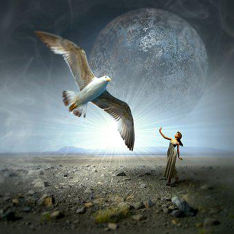 Cd Cover, Gull, Woman, Moon, Landscape, Magic