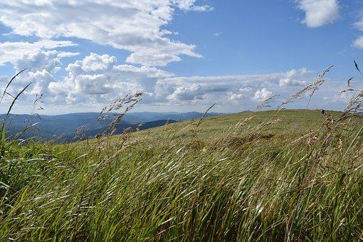 Grass, Mountains, Sky, View, Landscape, Meadow