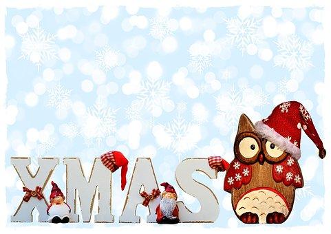 Xmas, Typography, Owl, Christmas, Hat, Cute, Season