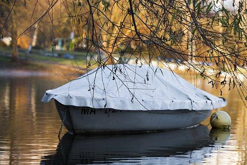 Tree, Aesthetic, Boot, Powerboat, Water, Lake, River
