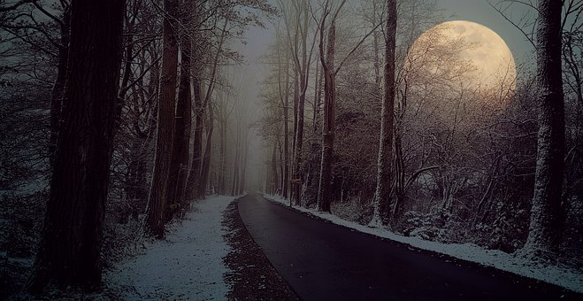 Road, Avenue, Winter, Fog, Moon, Snow, Trees, Away
