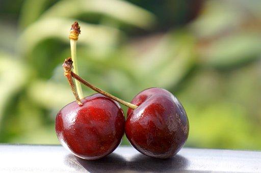Food, The Cherry Australia, Nine Dream