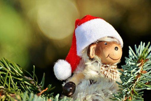 Christmas, Christmas Tree, Christmas Ornaments, Sheep