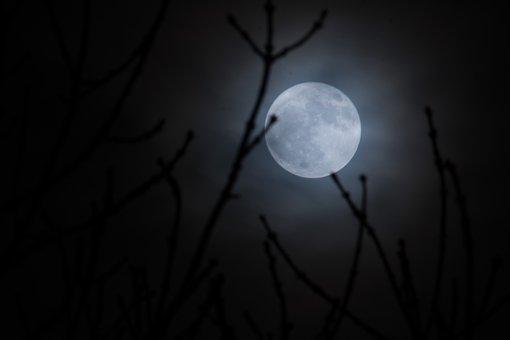 Moon, Supermoon, Moonlight, Full, Sky, Night, Nature