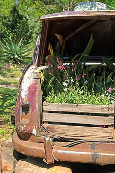Plant Boxes In Boot Of Old Car, Car, Boot, Boxes