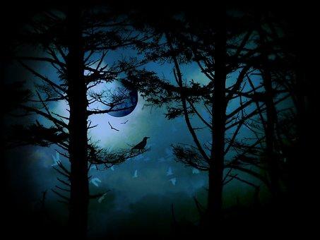 The Edge Of Twilight, Moon, Fantasy, Trees, Silhouette