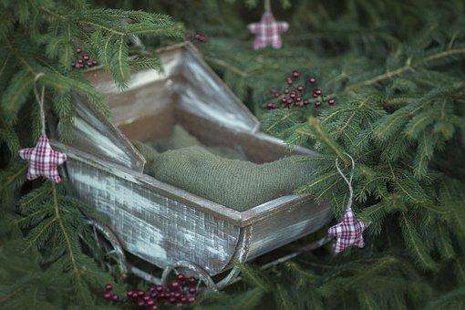 Christmas, Digital Background, Newborn, Nature, Digital