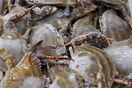 Blue Crab, Frozen Crab, Fishery, Market, Fresh, Seafood