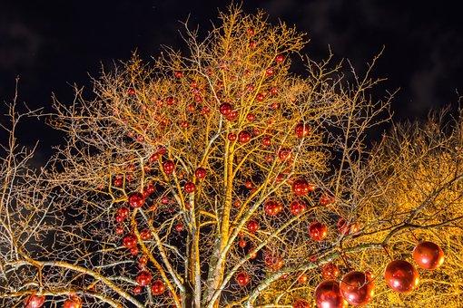 Christmas Images, Christmas Ornament, Christmas Time