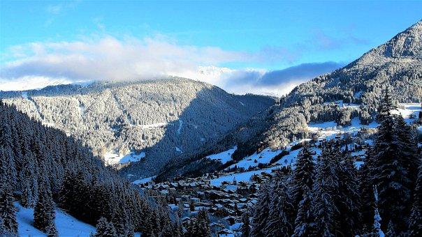 Winter, Snow, White, Landscape, Tree, Frost