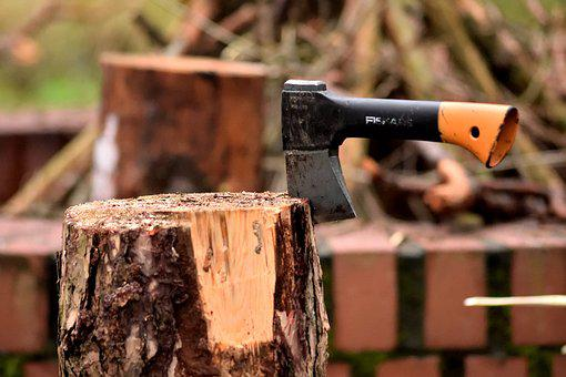 Ax, Lumberjack, Wood, An Outbreak Of, Log, Forest