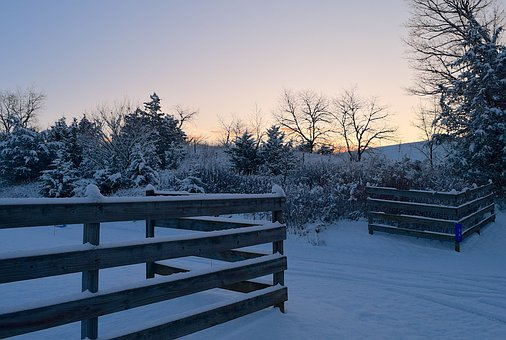 Winter, Snow, Morning, Cold, Wooden, Fence, Trees