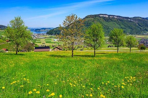 Stanserhorn, Lake Lucerne, Lake, Travel