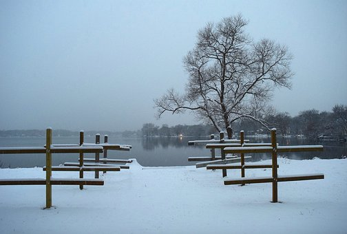 Winter, Lake, Trees, Frozen, Landscape, Nature, Cold