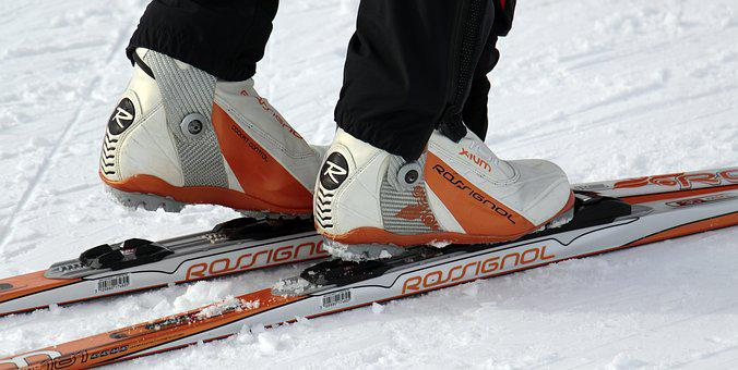 Cross Country Skiing, Cross-country Ski, Winter, Snow