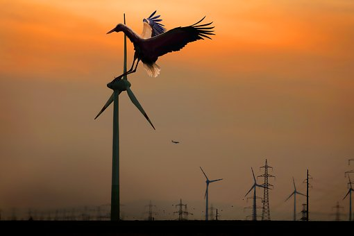 Silhouette, Sunset, Electricity, Energy, Sky, Dusk