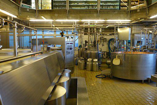Cheese Factory, Cheese Making