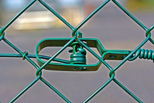 Wire Mesh Fence, Wire, Tensioner, Fence, Green, Braid