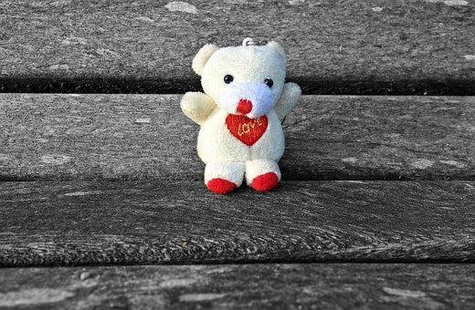 Bear, Cuddly Toy, Stuffed Animal, Stuffed Bear, Toy
