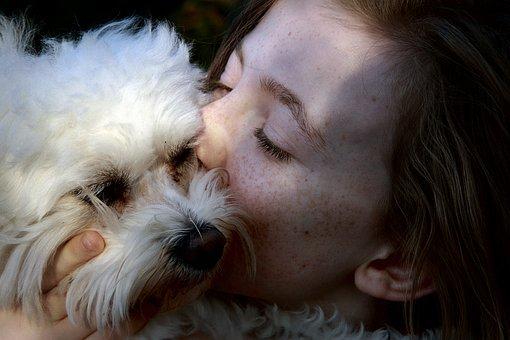 Complicity, Love, Portrait, Kiss, Girl, Domestic Animal