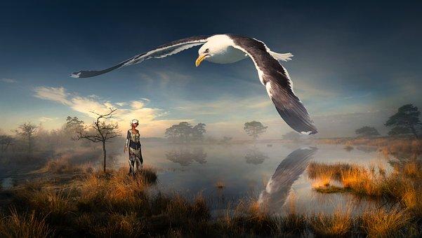 Fantasy, Landscape, Pond, Fog, Woman, Gull, Bird, Huge