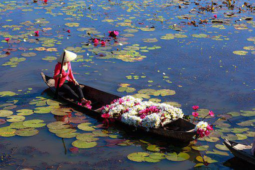Vietnam, The Boat, Natural, Wave, Throat, Flower