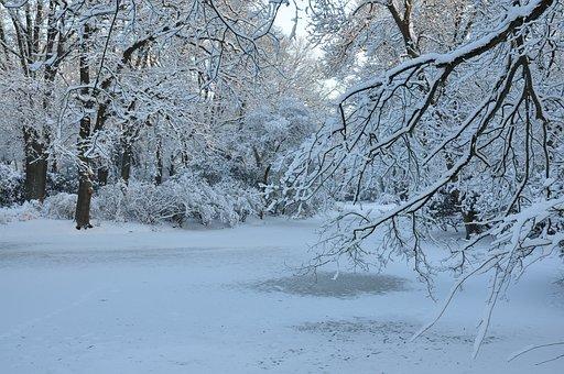 Winter, Landscape, Nature Recording