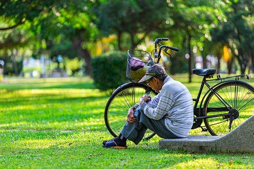 Grass, Summer, Park, Wheel, Nature, Old Man, Outdoor