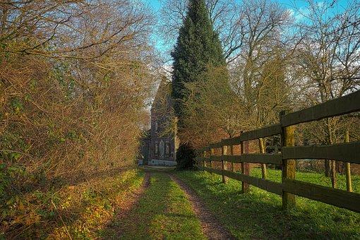 Trees, Nature, Landscape, Wood, Sky, Rural, Land, Field