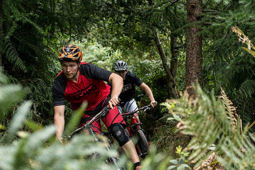 Woods, Biking, Adventure, Sport