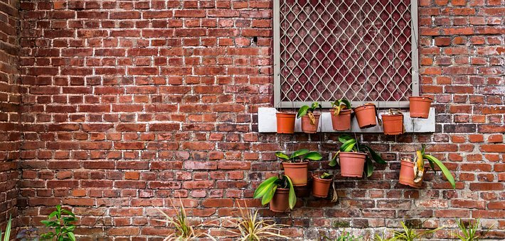 Brick, Wall, Old, Plant, Green, Grunge, Dirty, Block