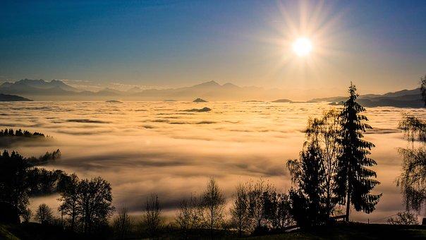 Landscape, Fog, Trees, Nature, Mountains, Mood