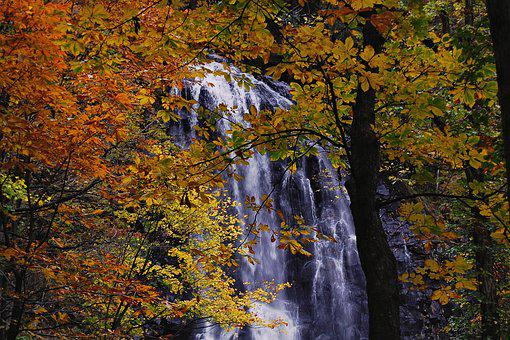 Japan, Natural, Landscape, Waterfall, Autumn