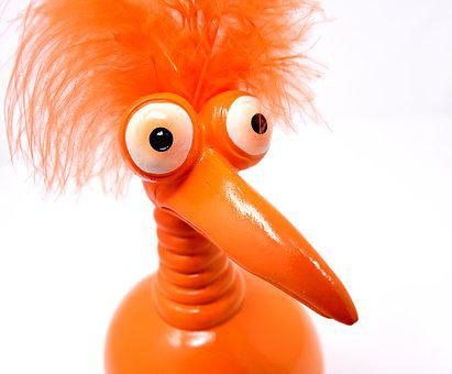 Joker, Orange, Funny, Weird Bird, Cute, Feather