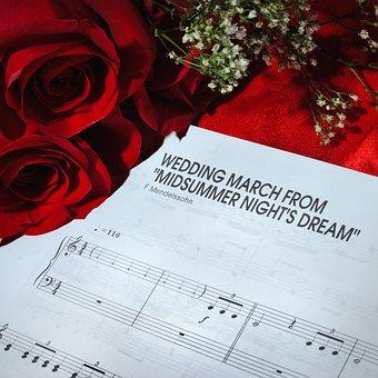 Rose, Paper, Love, Celebration, Wedding, Bride, Flowers