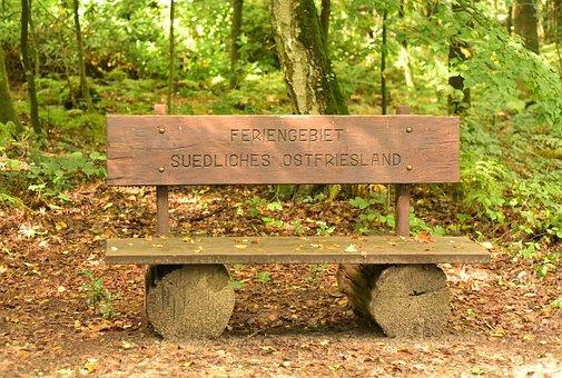 Wood, Nature, Bank, Tree, Woods, Park, Grass, Summer
