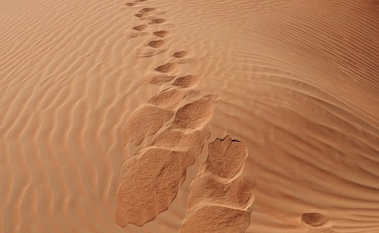 Sand, Desert, Sandy, Arid, Footprint