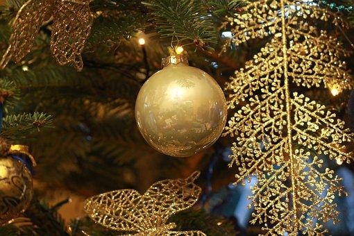 Christmas, Winter, Tree, Decoration, Gold, Fir