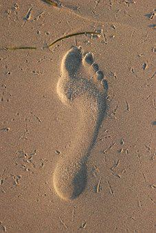 Footprint, Sand, Beach, Coast, Step, Walk, First Steps