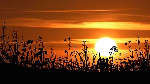 Sunset, Dusk, Silhouette, Sun, Evening, Nature, Sky