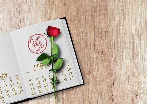 Calendar, Rose, Book, Stamp, Date, Year, Day, Week