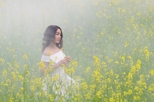 Portrait, Flower Reform, Girl, Yellow, Mist