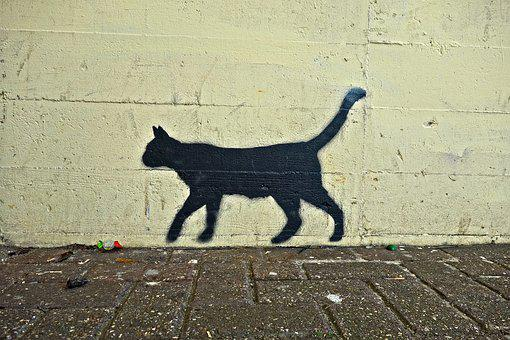 Cat, Black Cat, Graffiti, Street Art, Wall, Wall Art