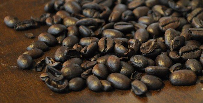 Food, Gourmet, Coffee, Caffeine, Harvest, Dry, Approach